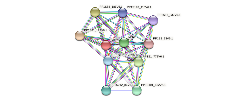 PP1S264_72V6.1 protein (Physcomitrella patens) - STRING interaction network