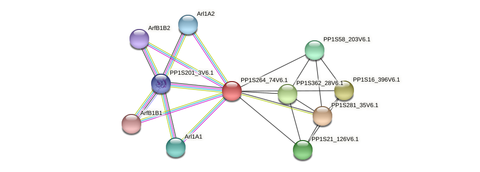PP1S264_74V6.1 protein (Physcomitrella patens) - STRING interaction network