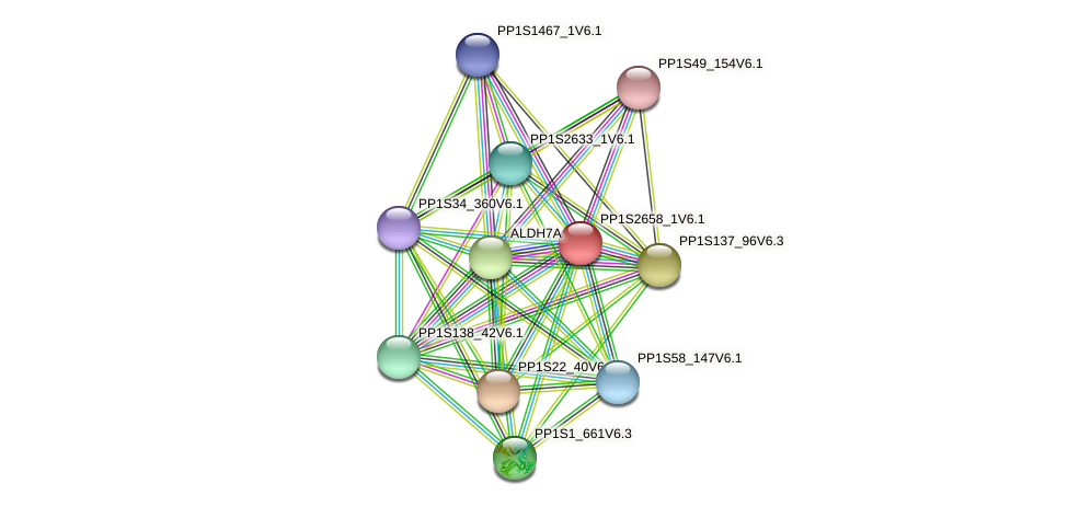 PP1S2658_1V6.1 protein (Physcomitrella patens) - STRING interaction network