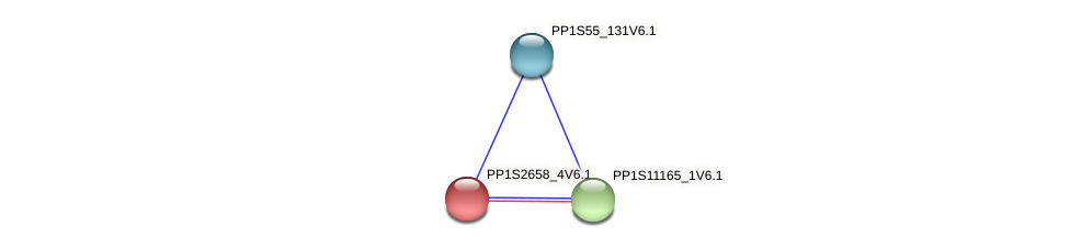 PP1S2658_4V6.1 protein (Physcomitrella patens) - STRING interaction network