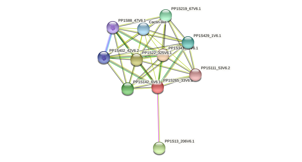PP1S265_33V6.1 protein (Physcomitrella patens) - STRING interaction network
