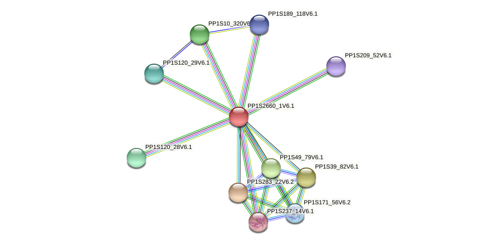PP1S2660_1V6.1 protein (Physcomitrella patens) - STRING interaction network