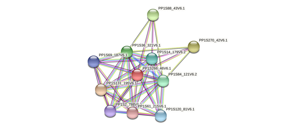 PP1S266_46V6.1 protein (Physcomitrella patens) - STRING interaction network