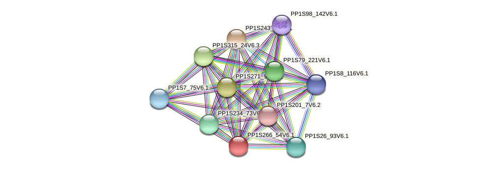 PP1S266_54V6.1 protein (Physcomitrella patens) - STRING interaction network