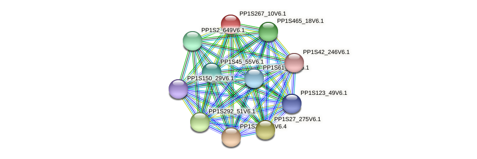 PP1S267_10V6.1 protein (Physcomitrella patens) - STRING interaction network