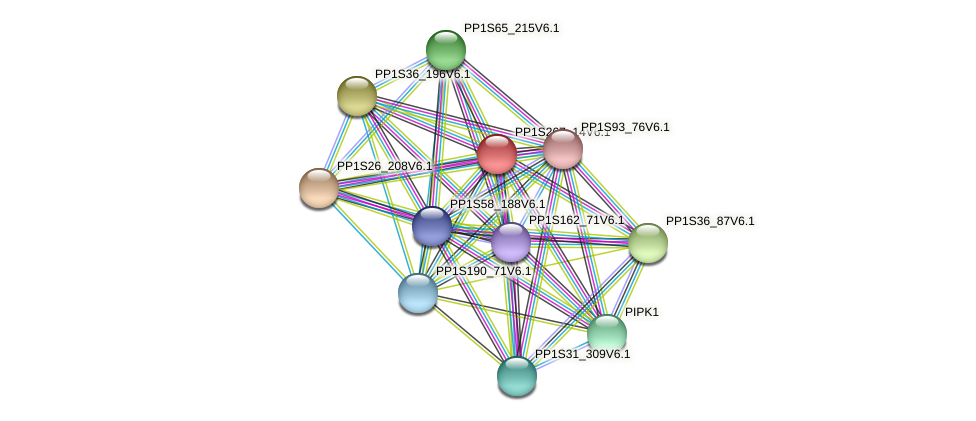 PP1S267_14V6.1 protein (Physcomitrella patens) - STRING interaction network