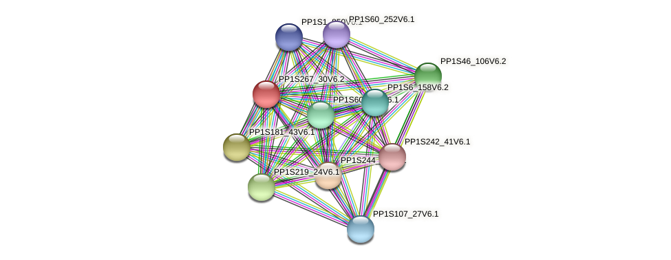 PP1S267_30V6.2 protein (Physcomitrella patens) - STRING interaction network