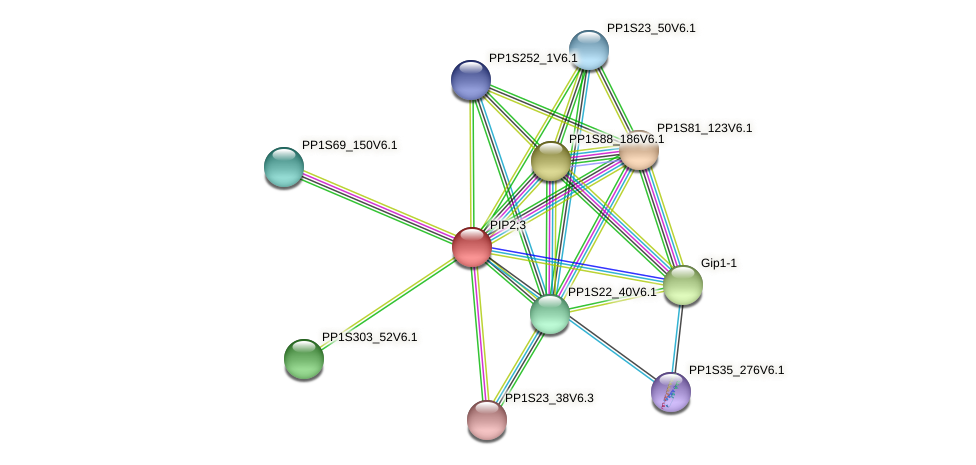PP1S267_61V6.1 protein (Physcomitrella patens) - STRING interaction network