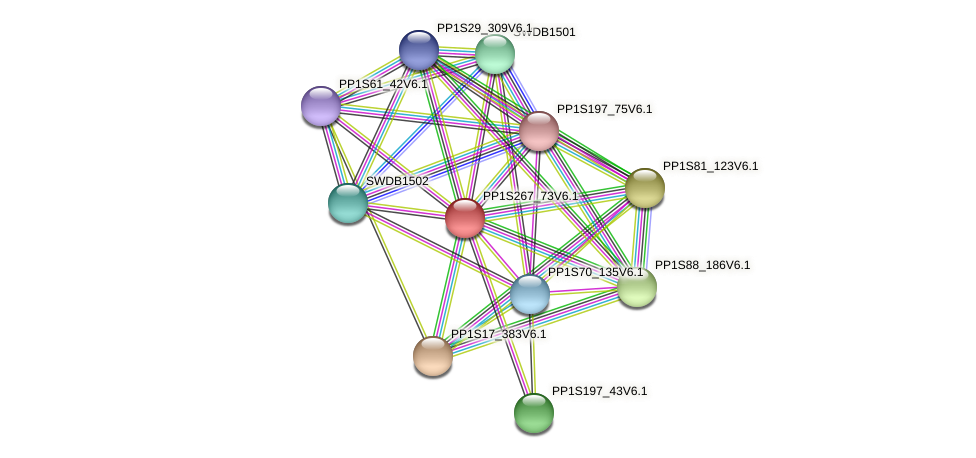 PP1S267_73V6.1 protein (Physcomitrella patens) - STRING interaction network