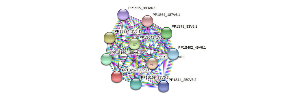 PP1S267_88V6.1 protein (Physcomitrella patens) - STRING interaction network