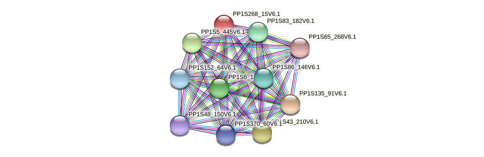 PP1S268_15V6.1 protein (Physcomitrella patens) - STRING interaction network