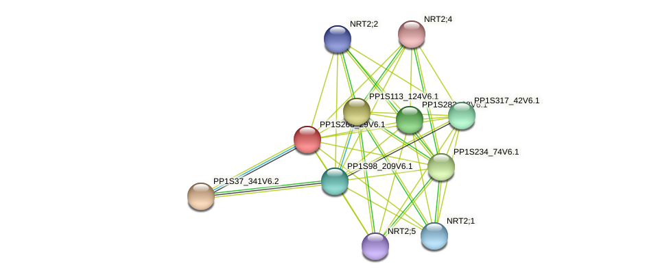 PP1S268_29V6.1 protein (Physcomitrella patens) - STRING interaction network