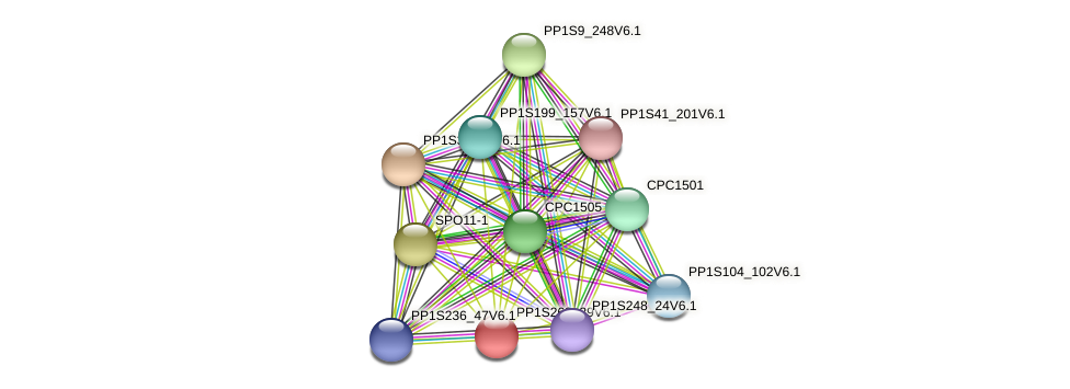 PP1S268_39V6.1 protein (Physcomitrella patens) - STRING interaction network