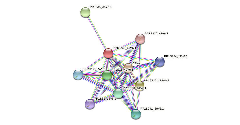 PP1S268_65V6.1 protein (Physcomitrella patens) - STRING interaction network