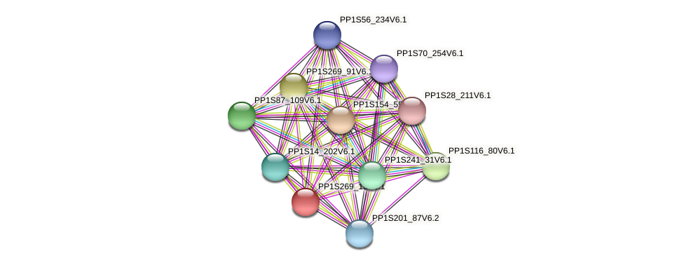 PP1S269_13V6.1 protein (Physcomitrella patens) - STRING interaction network