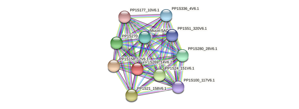 PP1S269_14V6.2 protein (Physcomitrella patens) - STRING interaction network