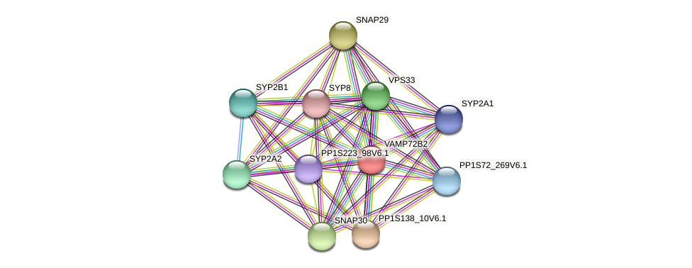 VAMP72B2 protein (Physcomitrella patens) - STRING interaction network