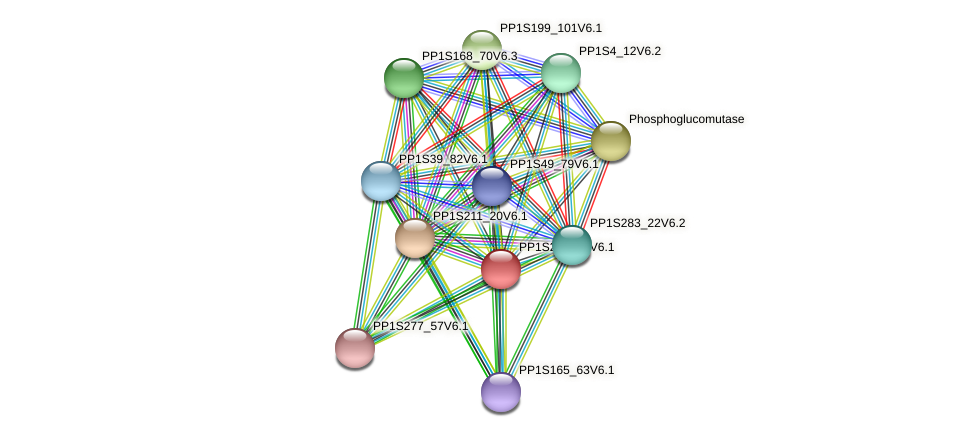PP1S269_25V6.1 protein (Physcomitrella patens) - STRING interaction network