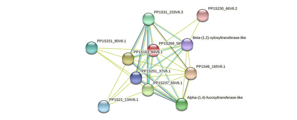 PP1S269_58V6.1 protein (Physcomitrella patens) - STRING interaction network