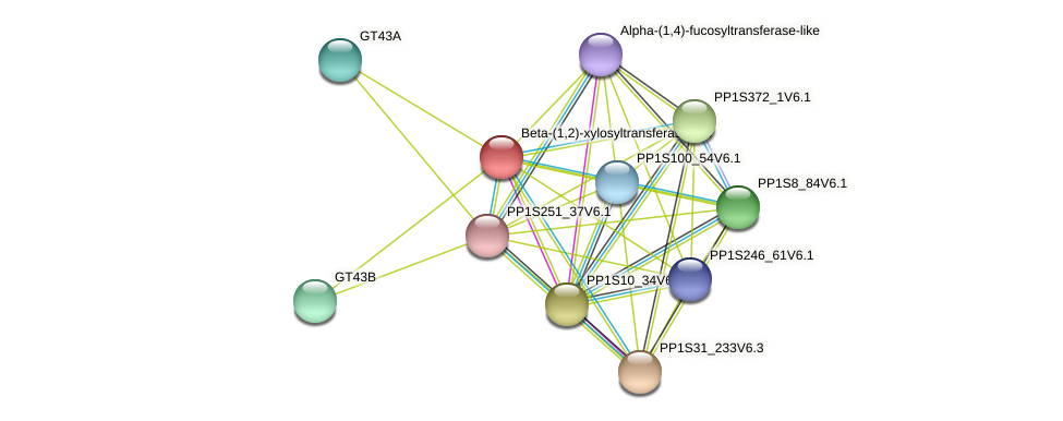 PP1S269_66V6.1 protein (Physcomitrella patens) - STRING interaction network