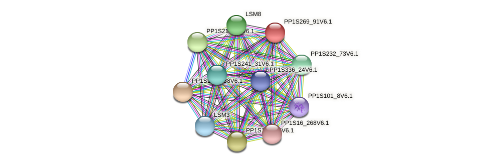 PP1S269_91V6.1 protein (Physcomitrella patens) - STRING interaction network