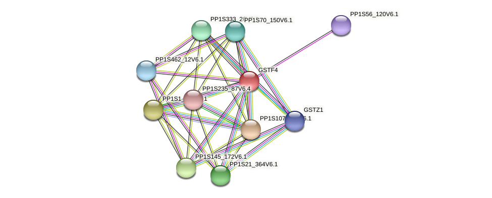 PP1S26_102V6.1 protein (Physcomitrella patens) - STRING interaction network