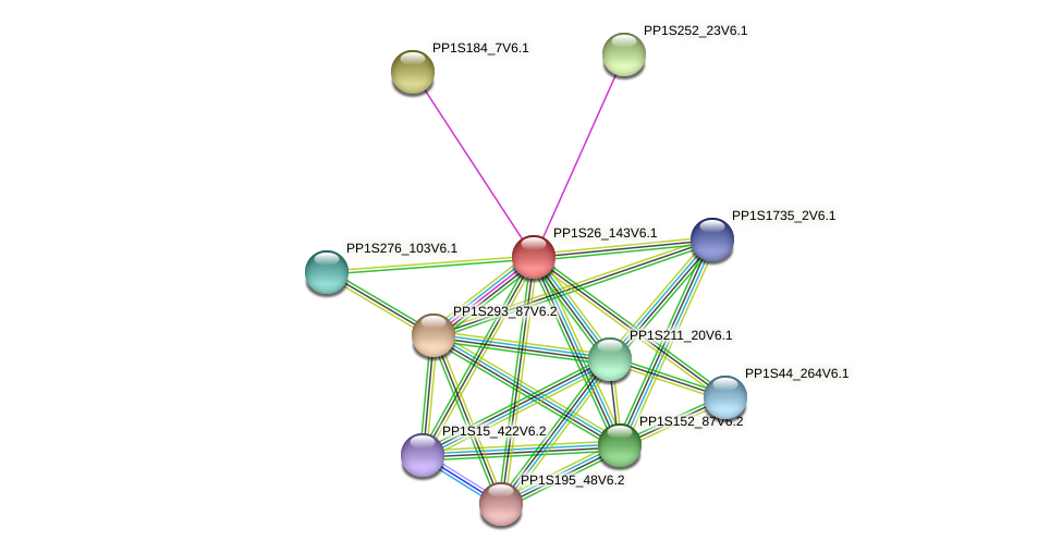 PP1S26_143V6.1 protein (Physcomitrella patens) - STRING interaction network