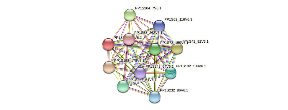 PP1S26_182V6.1 protein (Physcomitrella patens) - STRING interaction network