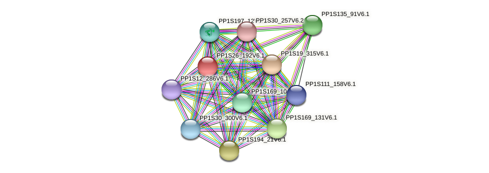 PP1S26_192V6.1 protein (Physcomitrella patens) - STRING interaction network