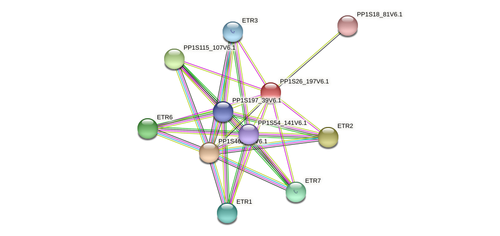PP1S26_197V6.1 protein (Physcomitrella patens) - STRING interaction network