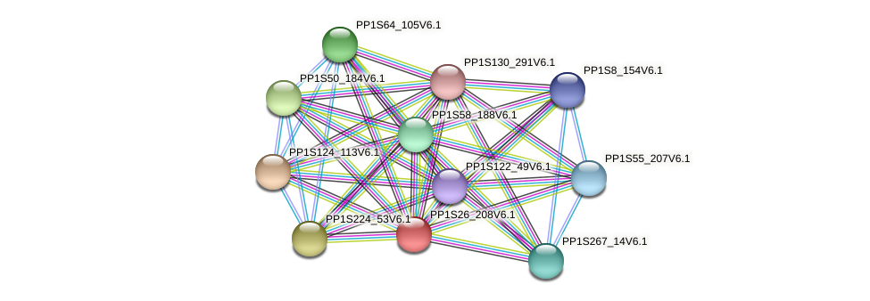 PP1S26_208V6.1 protein (Physcomitrella patens) - STRING interaction network