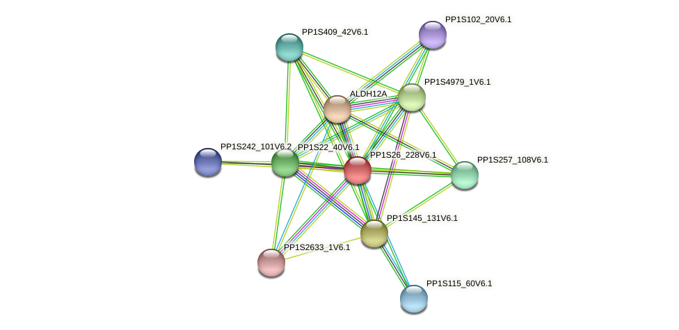 PP1S26_228V6.1 protein (Physcomitrella patens) - STRING interaction network