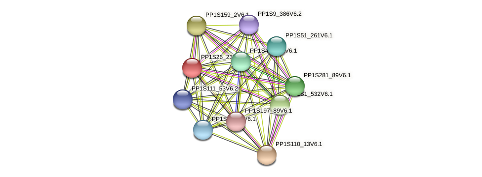 PP1S26_23V6.1 protein (Physcomitrella patens) - STRING interaction network