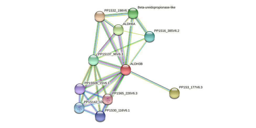 ALDH3B protein (Physcomitrella patens) - STRING interaction network