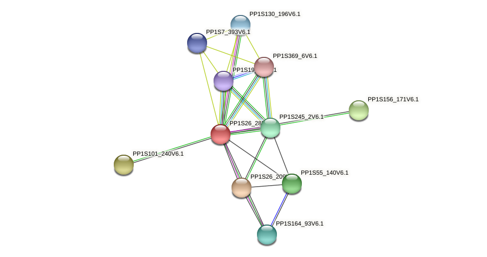 PP1S26_285V6.2 protein (Physcomitrella patens) - STRING interaction network