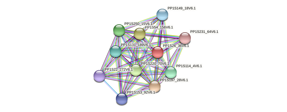 PP1S26_36V6.1 protein (Physcomitrella patens) - STRING interaction network
