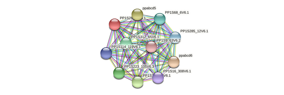 PP1S26_47V6.1 protein (Physcomitrella patens) - STRING interaction network