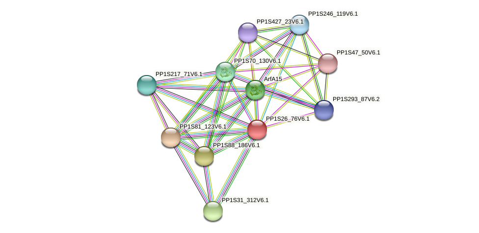 PP1S26_76V6.1 protein (Physcomitrella patens) - STRING interaction network