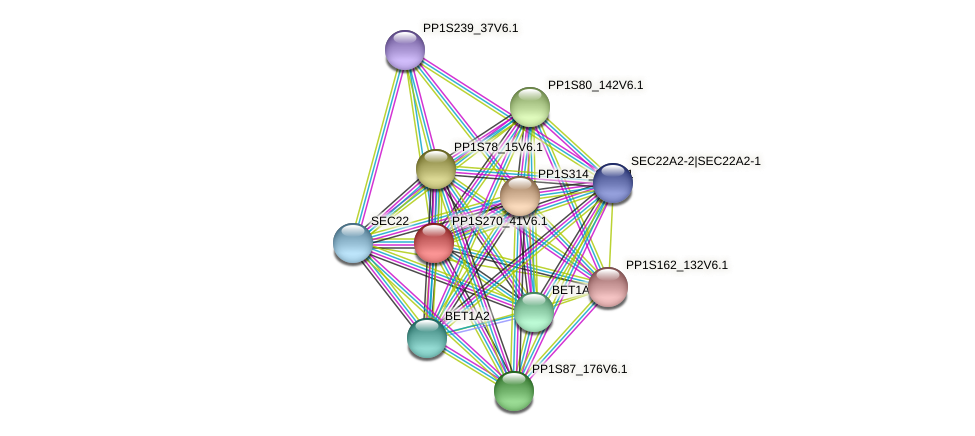 PP1S270_41V6.1 protein (Physcomitrella patens) - STRING interaction network
