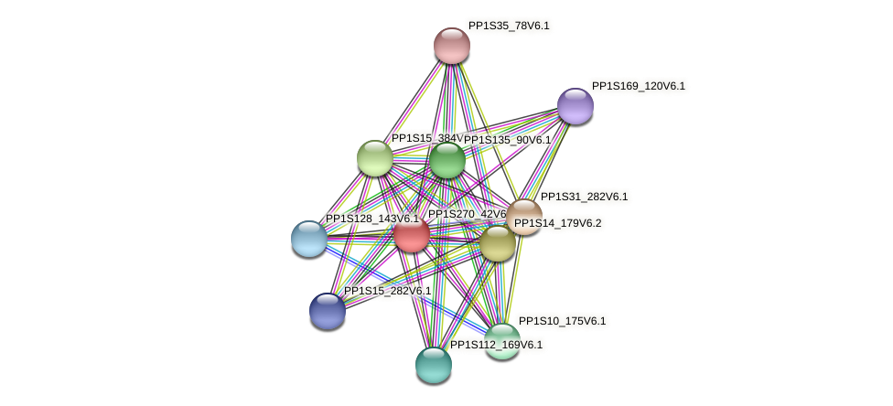 PP1S270_42V6.1 protein (Physcomitrella patens) - STRING interaction network