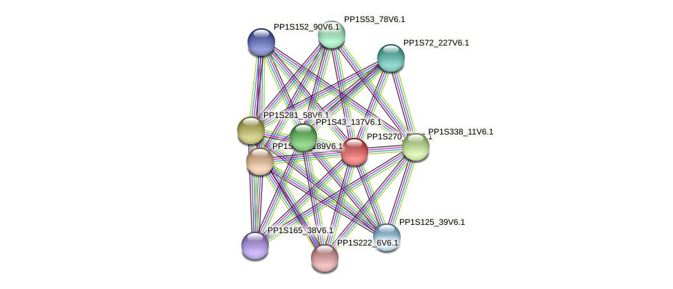 PP1S270_53V6.1 protein (Physcomitrella patens) - STRING interaction network