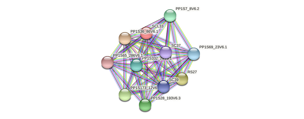 PP1S270_54V6.2 protein (Physcomitrella patens) - STRING interaction network