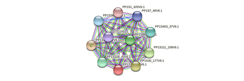 PP1S270_56V6.1 protein (Physcomitrella patens) - STRING interaction network