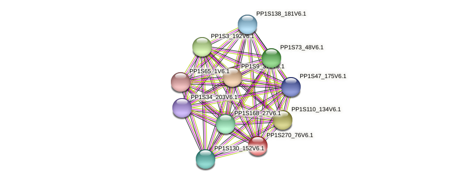 PP1S270_76V6.1 protein (Physcomitrella patens) - STRING interaction network