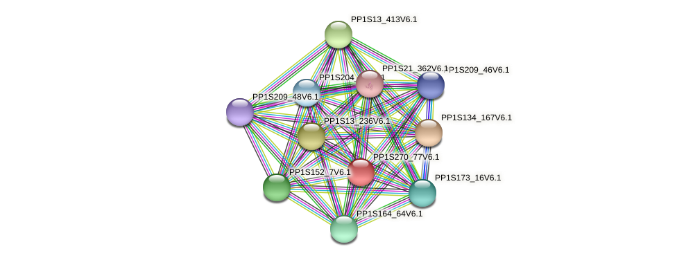 PP1S270_77V6.1 protein (Physcomitrella patens) - STRING interaction network