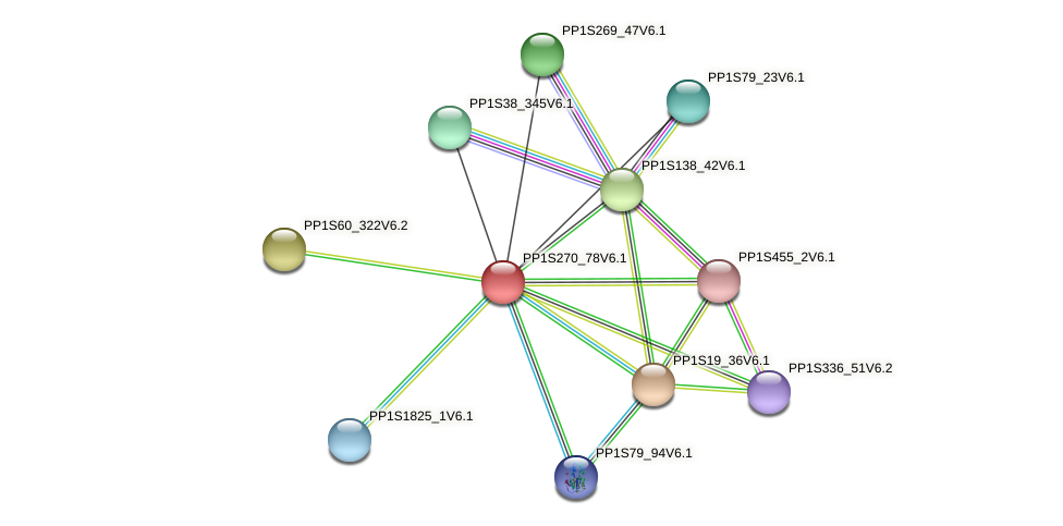 PP1S270_78V6.1 protein (Physcomitrella patens) - STRING interaction network