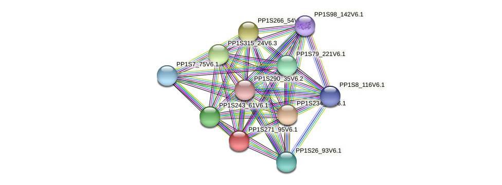 PP1S271_95V6.1 protein (Physcomitrella patens) - STRING interaction network