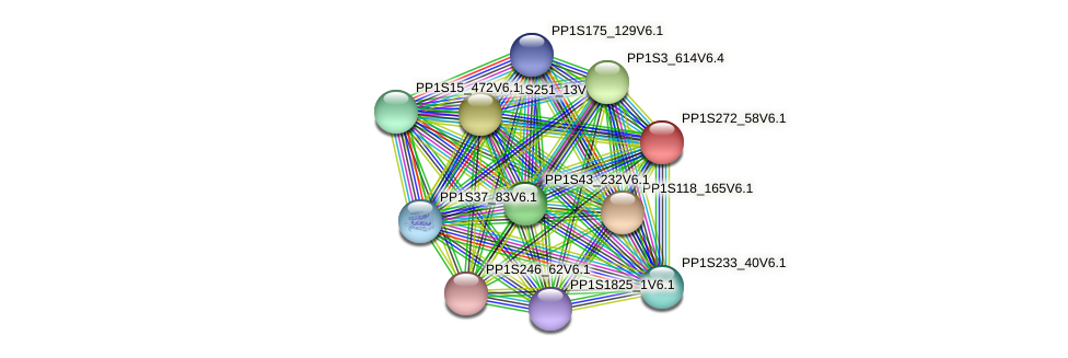 PP1S272_58V6.1 protein (Physcomitrella patens) - STRING interaction network