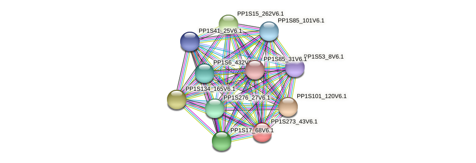 PP1S273_43V6.1 protein (Physcomitrella patens) - STRING interaction network