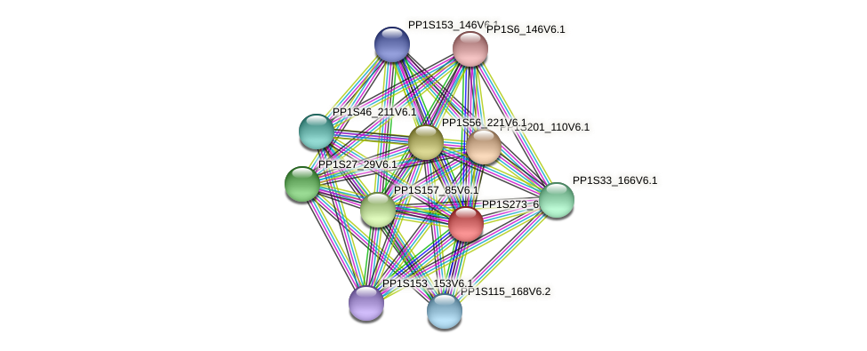 PP1S273_60V6.1 protein (Physcomitrella patens) - STRING interaction network